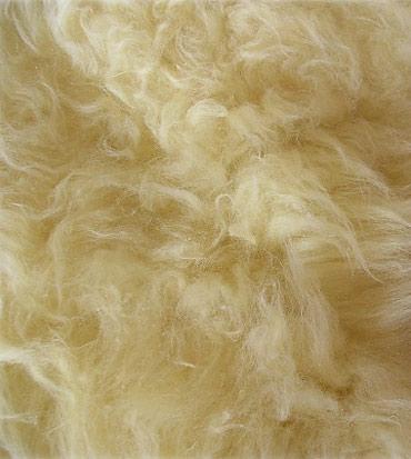 Fur detail