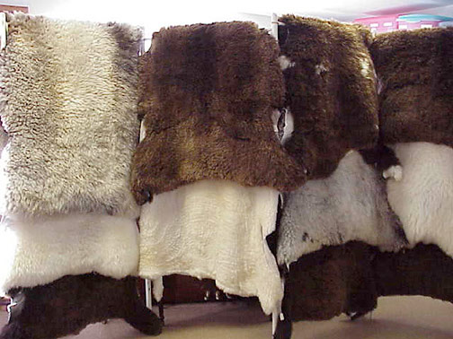 Furs on rack